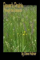 Dower's Prairie through the Seasons by Steve Hubner