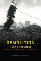 Demolition Means Progress: Flint, Michigan, and the Fate of the American Metropolis