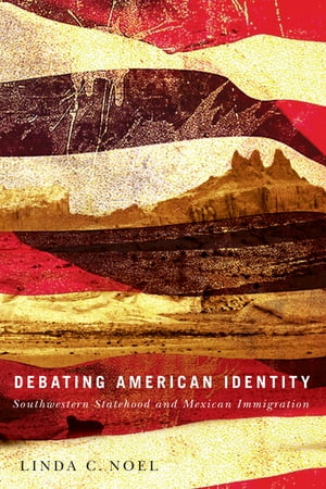 Debating American Identity Southwestern Statehood and Mexican Immigration
