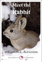 Meet the Rabbit: A 15-Minute Book for Early Readers by Caitlind L. Alexander