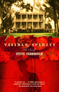 Visible Spirits: A Novel