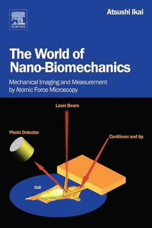 The World of Nano-Biomechanics: Mechanical Imaging and Measurement by Atomic Force Microscopy