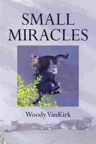 Small Miracles by Woody VanKirk