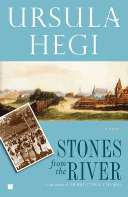Book Stones from the River by Ursula Hegi