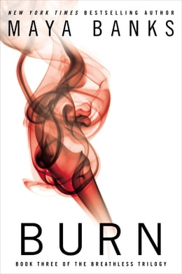 Book Burn by Maya Banks