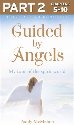 Book Guided By Angels: Part 2 of 3: There Are No Goodbyes, My Tour of the Spirit World by Paddy McMahon