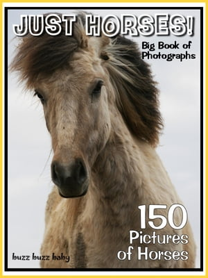 150 Pictures: Just Horse Photos! Big Book of Horse Photographs,  Vol. 1