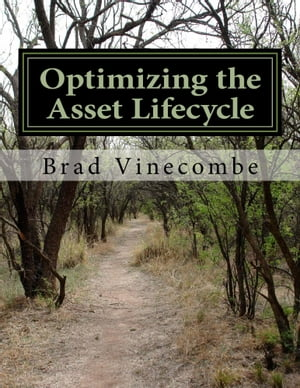 Optimizing the Asset Lifecycle by Brad Vinecombe