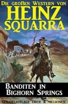 Banditen in Bighorn Springs by Heinz Squarra
