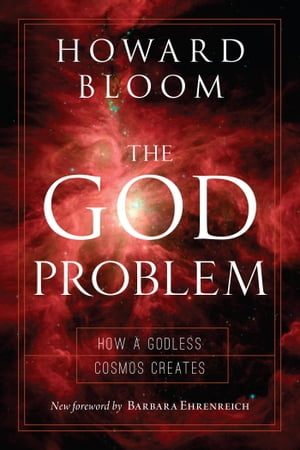The God Problem How a Godless Cosmos Creates