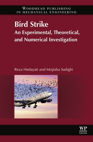 Bird Strike An Experimental,  Theoretical and Numerical Investigation