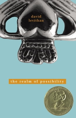 Book The Realm of Possibility by David Levithan