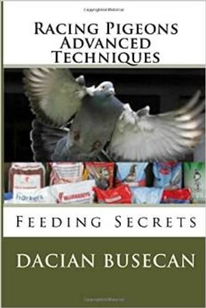 Racing Pigeons Advanced Techniques- Feeding Secrets