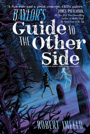 Baylor's Guide to the Other Side by Robert Imfeld