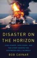 Disaster on the Horizon (Adult Technology) photo