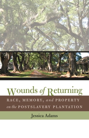 Wounds of Returning Race,  Memory,  and Property on the Postslavery Plantation