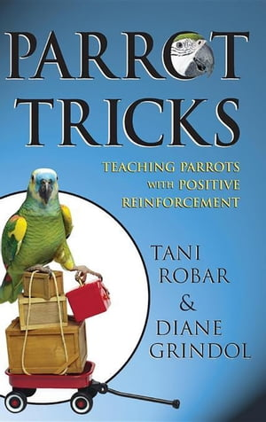 Parrot Tricks Teaching Parrots with Positive Reinforcement