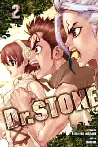 Dr. STONE, Vol. 2: Two Kingdoms Of The Stone World