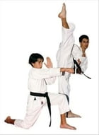 Karate For Beginners by Jacob Mansel