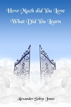 How Much Did You Love: What Did You Learn by Alexander Soltys Jones