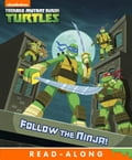 Follow the Ninja! (Teenage Mutant Ninja Turtles) 10bb9b61-1ad0-4b9e-a31a-2a025e035eb1