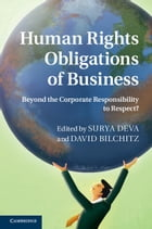 Human Rights Obligations of Business: Beyond the Corporate Responsibility to Respect? by Dr Surya Deva