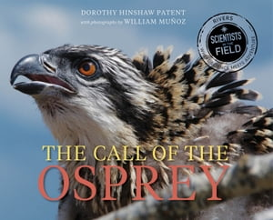 The Call of the Osprey