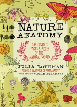 Nature Anatomy: The Curious Parts and Pieces of the Natural World by Julia Rothman