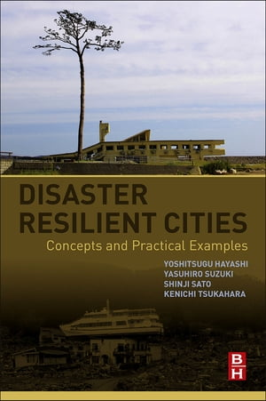 Disaster Resilient Cities Concepts and Practical Examples