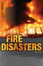 Fire Disasters by Ann Weil