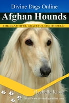 Afghan Hounds by Mychelle Klose