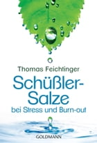 Schüßler-Salze bei Stress und Burn-out by Thomas Feichtinger