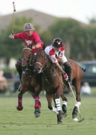 How to Play Polo by Brian Medlin