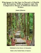 Pilgrimages to the Spas in Pursuit of Health and Recreation With an Inquiry into the Comparative Merits of Different Mineral Waters by James Johnson