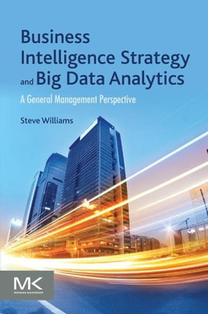 Business Intelligence Strategy and Big Data Analytics A General Management Perspective