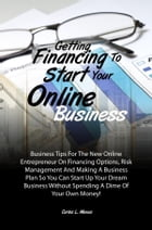Getting Financing To Start Your Online Business: Business Tips For The New Online Entrepreneur On Financing Options, Risk Management And Making A Bus by Carlos L. Menus