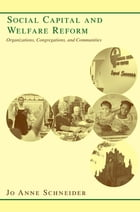 Social Capital and Welfare Reform: Organizations, Congregations, and Communities by Jo Anne Schneider