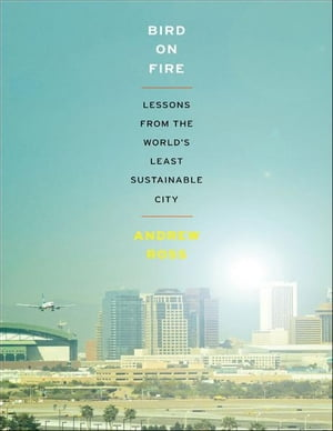 Bird on Fire:Lessons from the World's Least Sustainable City Lessons from the World's Least Sustainable City