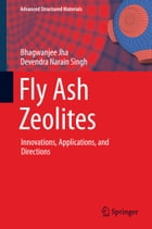Fly Ash Zeolites: Innovations, Applications, and Directions by Bhagwanjee Jha