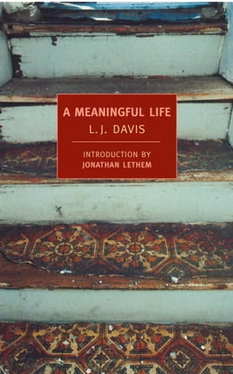 Book A Meaningful Life by Jonathan Lethem