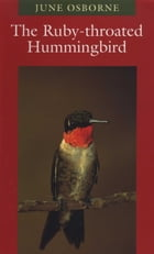 The Ruby-throated Hummingbird by June Osborne