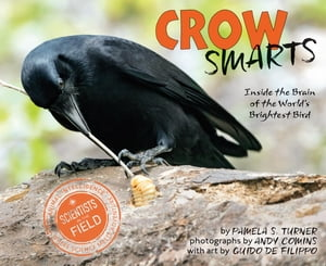 Crow Smarts Inside the Brain of the World's Brightest Bird