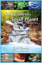 Solutions for a Small Planet, volume 1 by Pepper Lewis