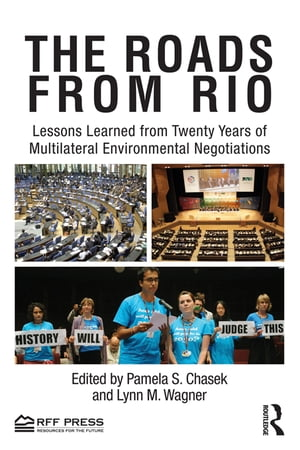 The Roads from Rio Lessons Learned from Twenty Years of Multilateral Environmental Negotiations