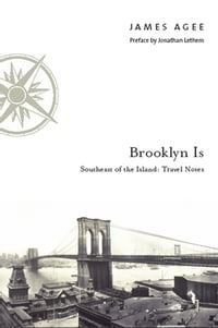 Brooklyn Is: Southeast of the Island: Travel Notes