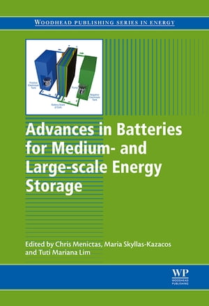Advances in Batteries for Medium and Large-Scale Energy Storage Types and Applications