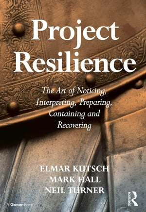Project Resilience The Art of Noticing,  Interpreting,  Preparing,  Containing and Recovering
