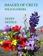 Images of Crete - Wild Flowers by Geoff Needle