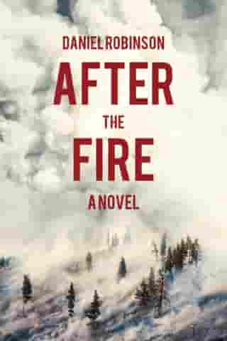 After the Fire: A Novel by Daniel Robinson