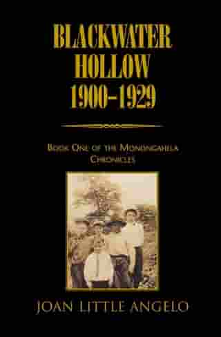 Blackwater Hollow 1900-1929: Book One of the Monongahela Chronicles